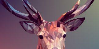 סודות ההצלחה – להיות מעצב טוב יותר !! מדריך למתחילים