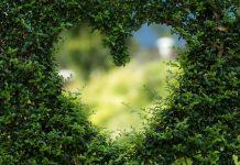 בוחרים באהבה בכל שלב בחיים